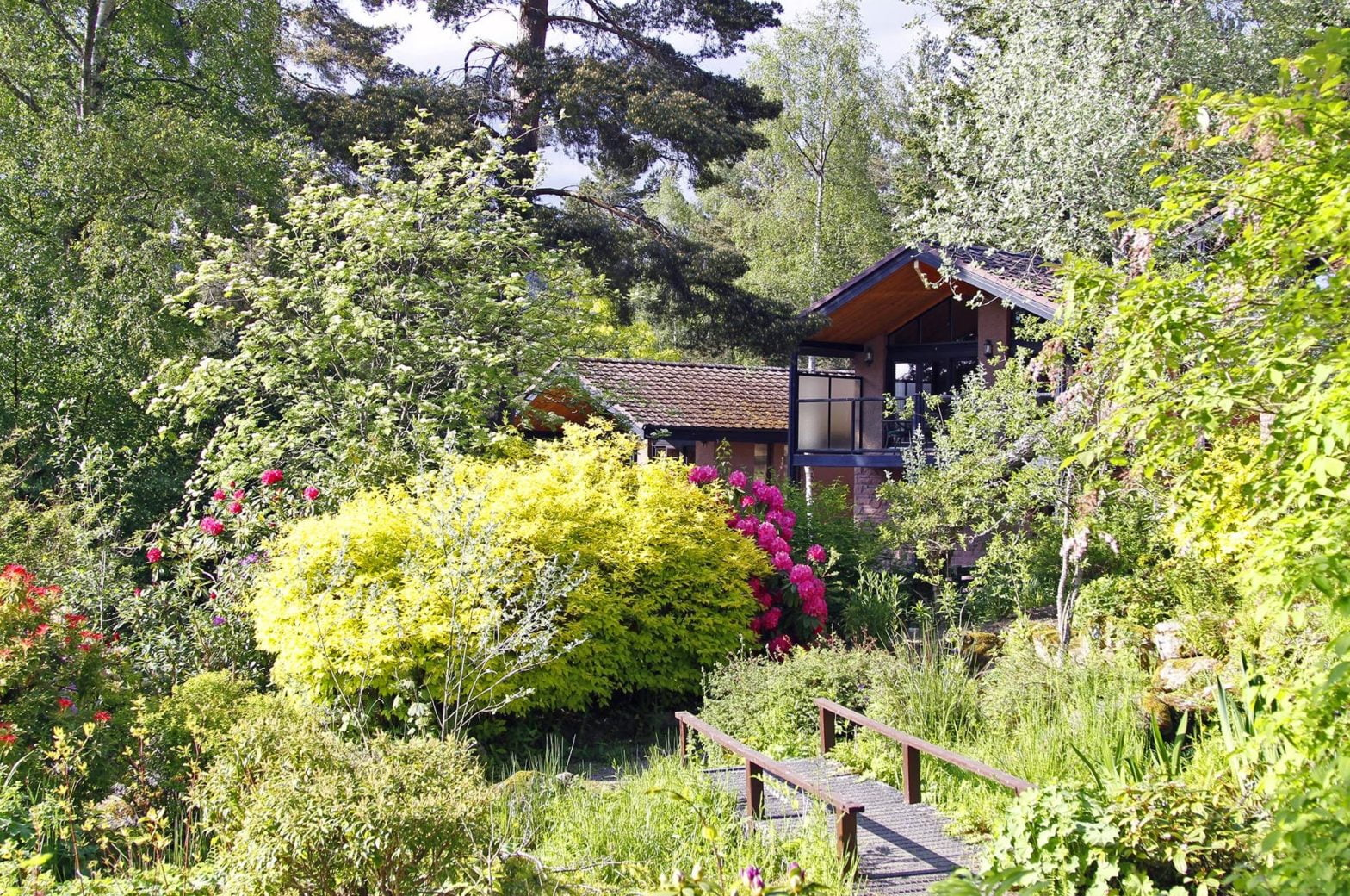 Rental Page - View of Lodges
